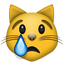 :crying_cat_face: